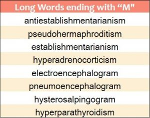 Longest words ending in M